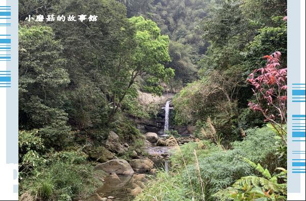 109.4.4.(31)嘉義-圓潭生態園區.JPG