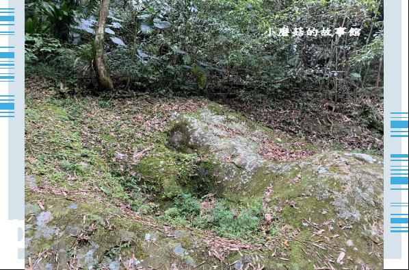 109.4.4.(40)嘉義-圓潭生態園區.JPG