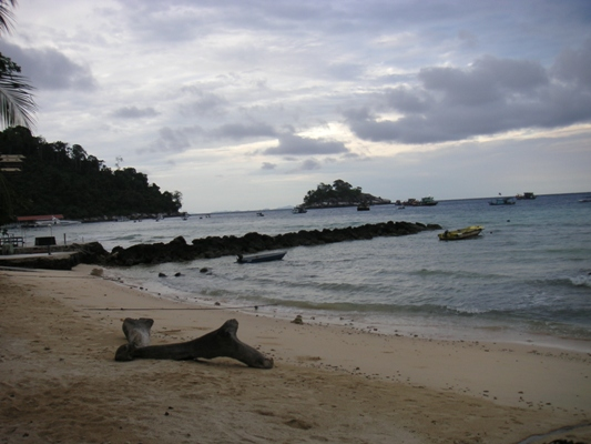刁曼岛。早晨~ 09042005.JPG