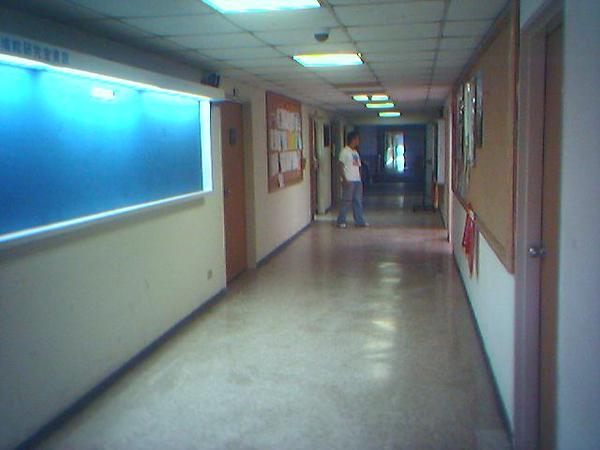 系辦外的走廊