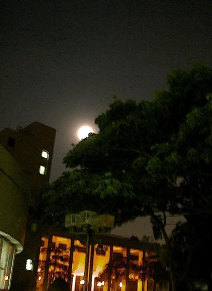 060809-夏夜晚風烤肉夜