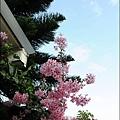 草坪頭&阿里山 062.JPG
