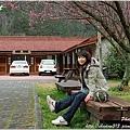 2011 武陵櫻花祭 189.JPG