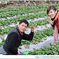 大湖草莓之旅 003.JPG