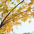 鹿場_斯勇頭目部落 091.JPG