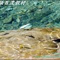 鹿場_斯勇頭目部落 168.JPG