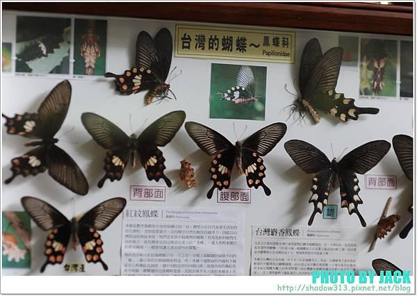 桃源仙谷2012 170.JPG