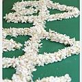 荷苞山客家桐花祭 112