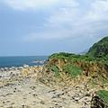 和平島公園 101