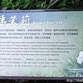 梅嶺登山步道 018.JPG