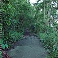 梅嶺登山步道 040.JPG