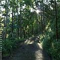 梅嶺登山步道 046.JPG