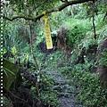 梅嶺登山步道 071.JPG
