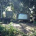 梅嶺登山步道 083.JPG