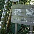 梅嶺登山步道 085.JPG