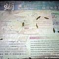 梅嶺登山步道 114.JPG
