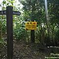 梅嶺登山步道 115.JPG
