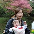 2015-阿里山二日行 (123).JPG
