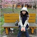 2011 武陵櫻花祭 141.JPG