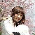 2011 武陵櫻花祭 341.JPG