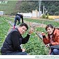 大湖草莓之旅 032.JPG