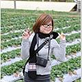 大湖草莓之旅 004.JPG