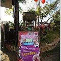 大湖草莓之旅 495.JPG