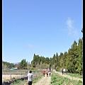 2009桃花緣 121.JPG