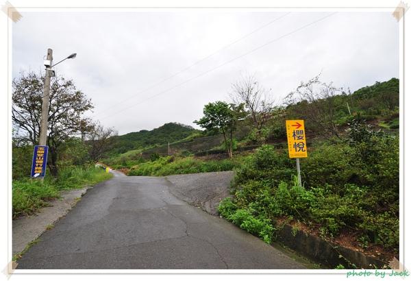 往櫻悅的路