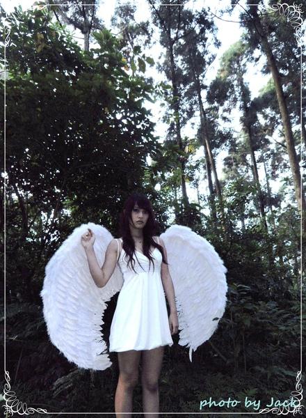 天使與惡魔 272.JPG