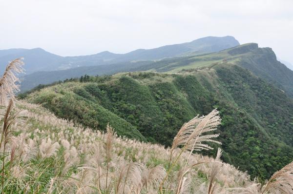 平坦蜿蜒的稜線.JPG