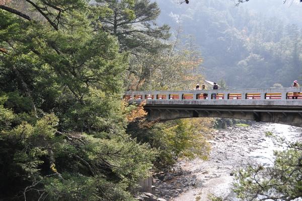 入口處的橋