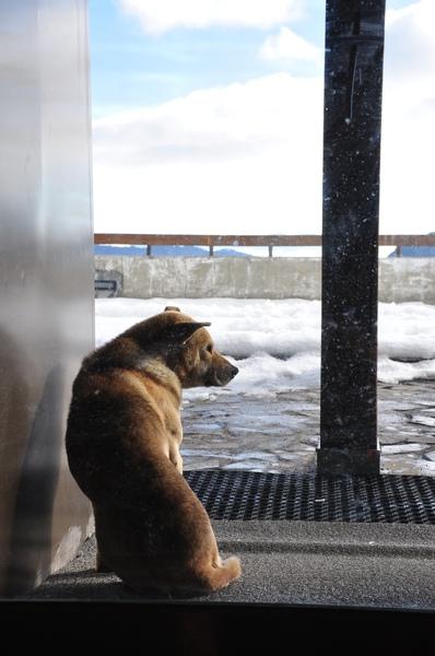 ㄚ你們在裡面吃得很愉快ㄏㄡ? 外面很冷ㄋ