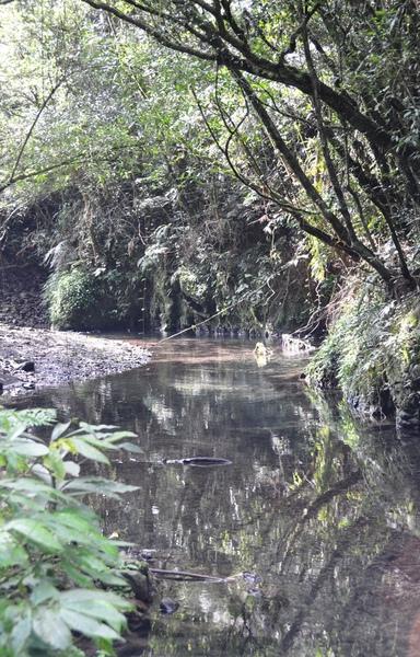途中的小溪