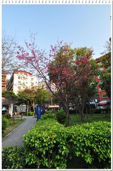 慶城公園 3-11