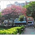 慶城公園2 009.JPG