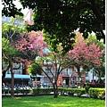 慶城公園2 010.JPG