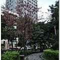 慶城公園2 083.JPG