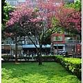 慶城公園2 085.JPG
