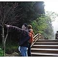 杉林溪 11