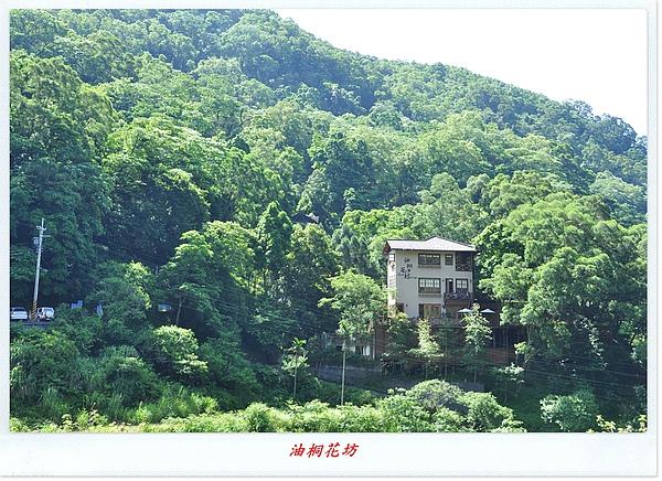 油桐花坊&天空之城 003.JPG