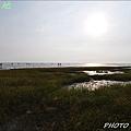 向陽農莊&龍鳳漁港 057.JPG