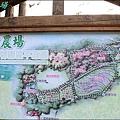 武陵露營去 320.JPG