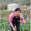 大湖草莓之旅 040.JPG