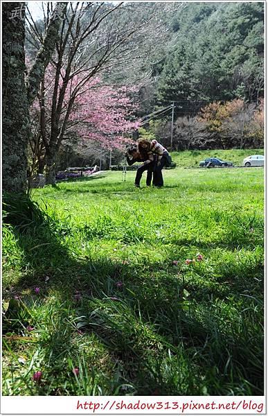 武陵露營去 090.JPG