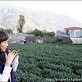 草坪頭&阿里山 102.JPG