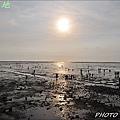 向陽農莊&龍鳳漁港 077.JPG