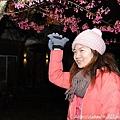 2011 武陵櫻花祭 075.JPG