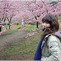2011 武陵櫻花祭 211.JPG