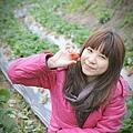 大湖草莓之旅 050.JPG
